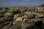 Morlaix - Un peu plus loin au Dourduff