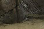 Carantec - Ile Calot - Roches et sable